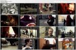 Londek (2008) PL.TVRip.XviD / PL