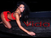 Vida Guerra : Very Hot Wallpapers x 9